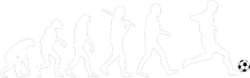 Evolution Fussball
